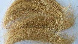 椰壳纤维进口清关需要的单证有哪些?