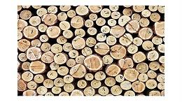 [案例分析]巴西木板进口报关关税费用|单证要哪些?