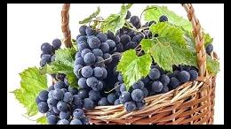 【案例】鲜葡萄从澳大利亚进口到广州报关