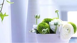 东莞鲜花进口报关代理所需单证及流程