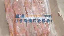 进口食品案例分析|印度尼西亚冻鱼进口清关