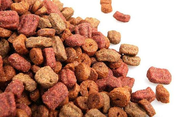 宠物食品进口报关
