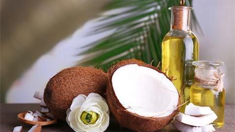 椰子油进口报关