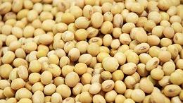 前7个月山东农产品进出口破千亿元,民营企业为进出口主力