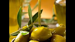 东莞食品进口清关之土耳其橄榄油进口报关流程