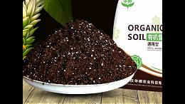 肥料进口广州代理报关注意事项与流程