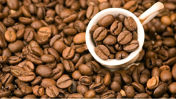 咖啡豆进口报关