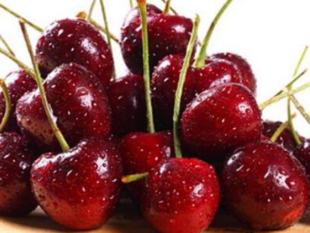 水果广州码头进口报关,水果进口报关,水果进口报关资料